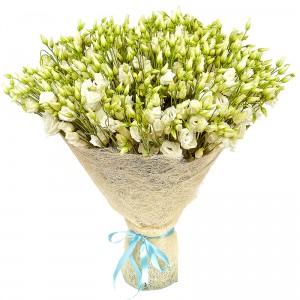Сицилия — Букеты цветов заказать с доставкой в KievFlower.  Артикул: