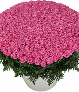 """Композиция  из роз """"Розовая Пантера""""  — Букеты цветов заказать с доставкой в KievFlower.  Артикул: 8027"""