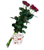 5 красных роз + рафаэлло
