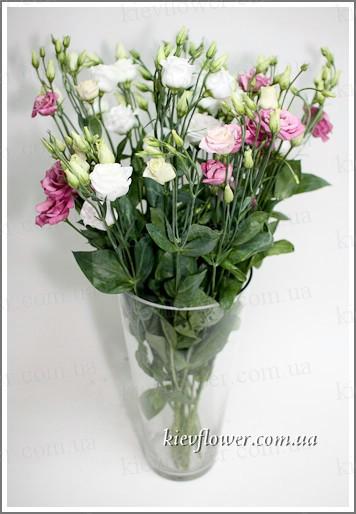 Цветы китая купить купить подарок жене на день рождения в минске
