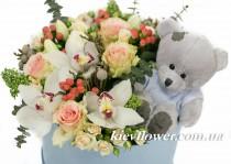 Цветы в коробке с Мишкой