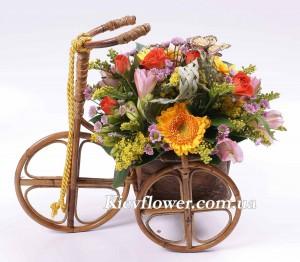 Веселая прогулка — Букеты цветов заказать с доставкой в KievFlower.  Артикул: 05771