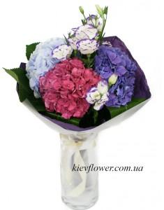 Гортензии в саду цветут — Kievflower - Доставка цветов