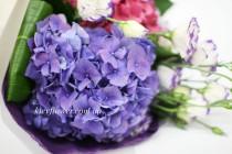 Гортензии в саду цветут
