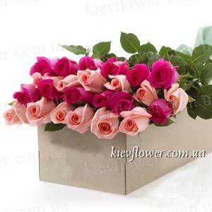 25 роз в подарочной коробке (Роза Эквадор) — Цветы в подарочных коробках заказать с доставкой в KievFlower.  Артикул: 0656