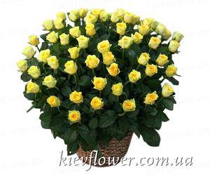 75 роз в корзине — Букеты цветов заказать с доставкой в KievFlower.  Артикул: 1280