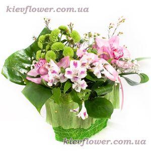 Сумочка с орхидеями — Букеты цветов заказать с доставкой в KievFlower.  Артикул: 0768