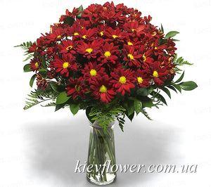 Букет бордовых хризантем — Букеты цветов заказать с доставкой в KievFlower.  Артикул: 1226