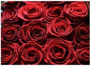 Тысяча и одна роза:) — Букеты цветов заказать с доставкой в KievFlower.  Артикул: 1002