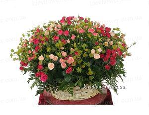 """Корзина роз """"Дива"""" — Букеты цветов заказать с доставкой в KievFlower.  Артикул: 7020"""