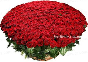 "Корзина из 501 розы ""LUX"" — Букеты цветов заказать с доставкой в KievFlower.  Артикул: 7021"
