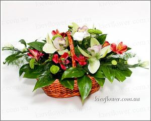 "Корзинка ""Яркий день"" — Букеты цветов заказать с доставкой в KievFlower.  Артикул: 0513"