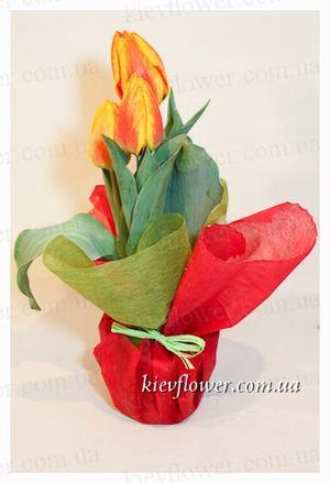 """Композиция """"тюльпаны"""" — Букеты цветов заказать с доставкой в KievFlower.  Артикул: 1824"""