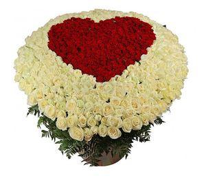 Пламенное сердце - 501 роза — Букеты цветов заказать с доставкой в KievFlower.  Артикул: 0811