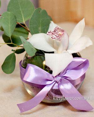 """Композиция """"Для милых дам!"""" — Букеты цветов заказать с доставкой в KievFlower.  Артикул: 1771"""