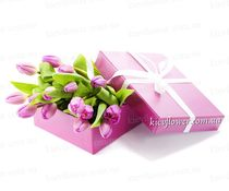 15 тюльпанов в подарочной коробке