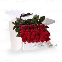 25 роз в подарочной коробке