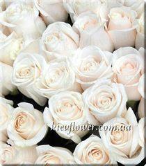 Роза Vendella
