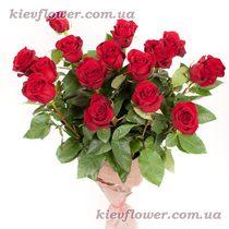 Букет из 15 красных роз (Роза Эквадор)