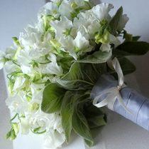 Букет невесты - горошек белый №11