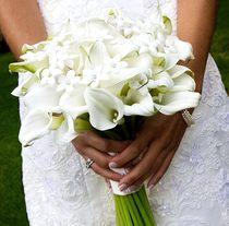 Букет невесты  из белых калл № 14