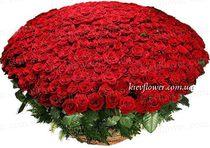 """Корзина из 501 розы """"LUX"""""""
