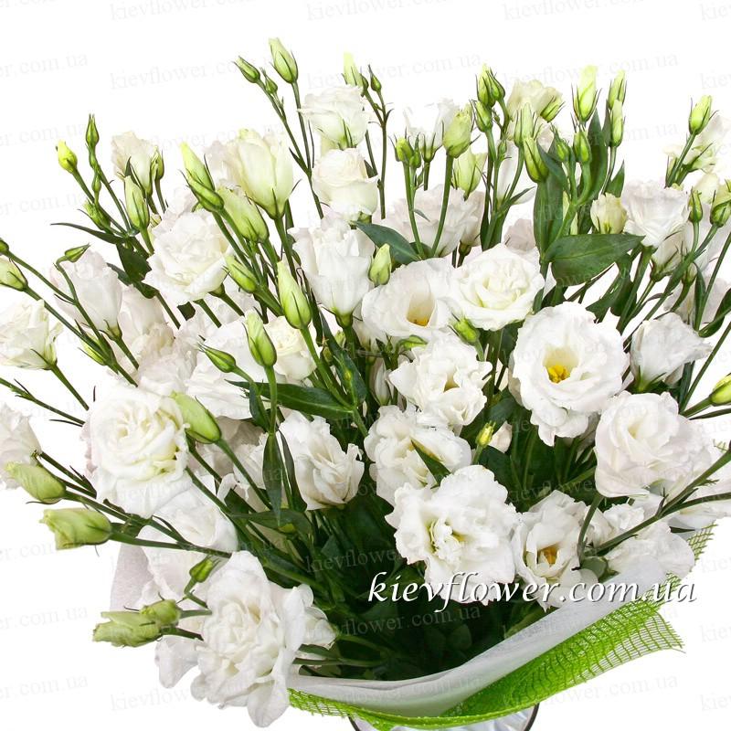 Заказать букет цветов с доставкой ромашки